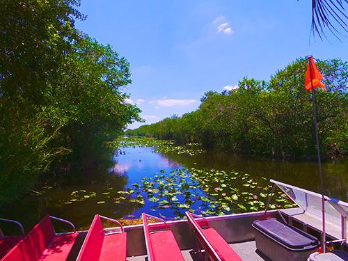 Everglades-Kara-Franker