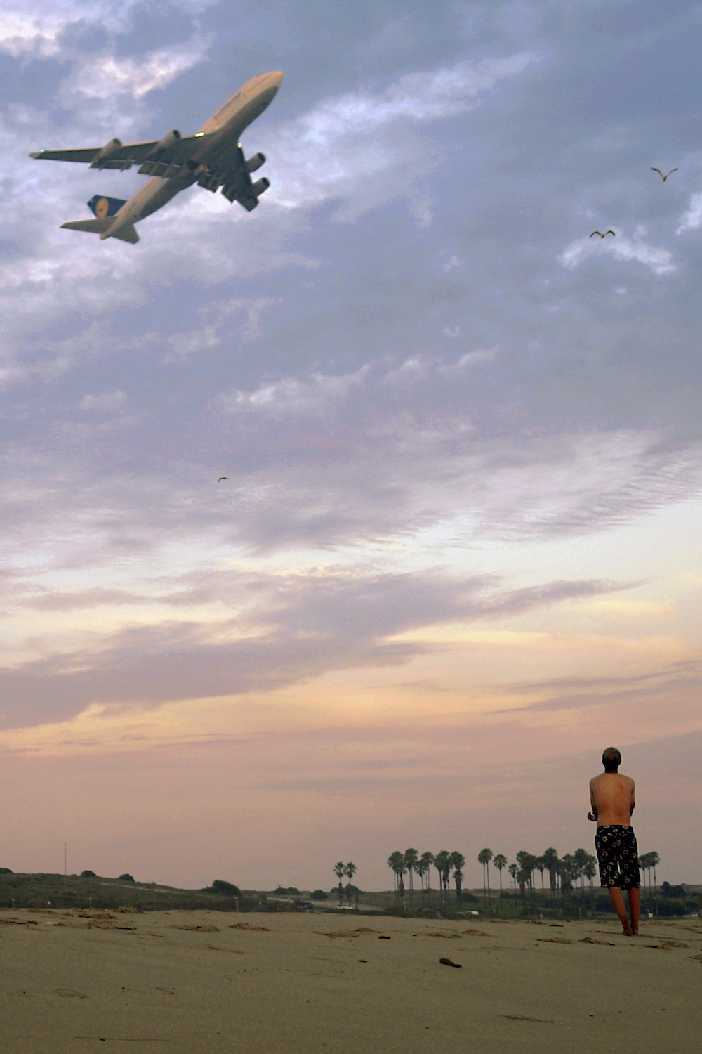 A plane flies over Dockweiler State Beach. Courtesy of Andrew Hart.
